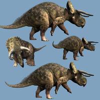 Nasutoceratops-4-m