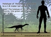 Panphagia-size