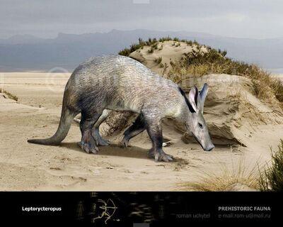 Leptorycteropus