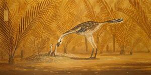 Kakuru-Paleoartist dc4a