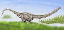 1307437152 mamenchisaurus1