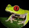 Земноводные лого