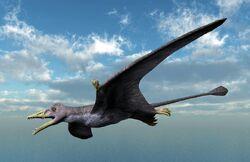 Eudimorphodon by ntamura-d9zfepc 1