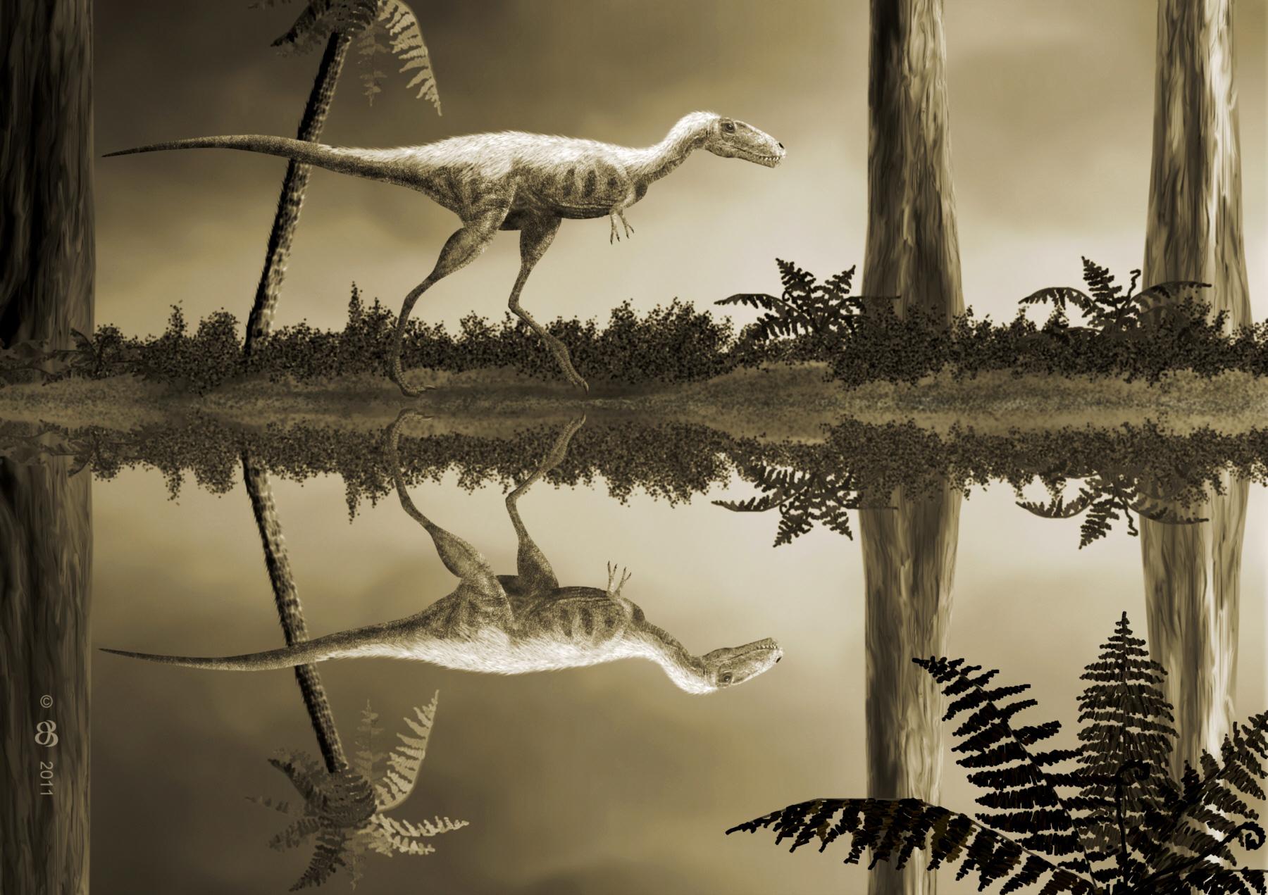 картинки динозавров рапторекс самая красивая женская
