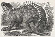1871-Litograf the Hylaesaurus by Benjamin Waterhouse Hawkings