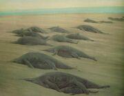 Douglas Henderson (1988), Shonisaurus popularis