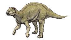 Fukuisaurus-1
