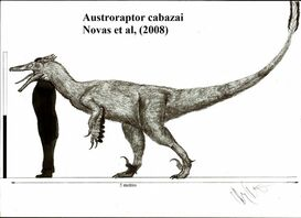 Austroraptor cabazai by teratophoneus-d4yef92 1ab5
