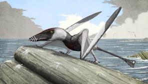 1Dorygnathus Witton low res