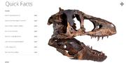 Tyrannosaurus TE-73