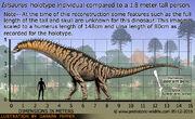 Isisaurus-size