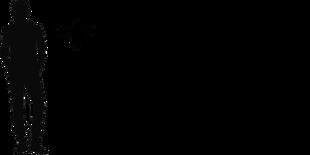 Preondactylus size