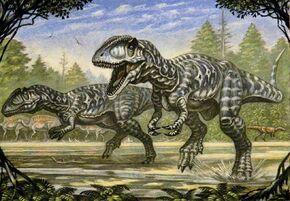 Кархародонтозавр7