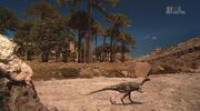 When Dinosaurs Roamed America Dryosaurus