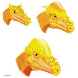 Головы дракорекса, стигимолоха и пахицефалозавра