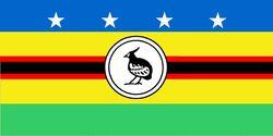 Официальный флаг провинции Шуазёль