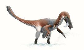 Austroraptor Reconstruction