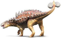 Euplocephalus Albert daamm9
