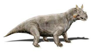 Estemmenosuchus mirabilis