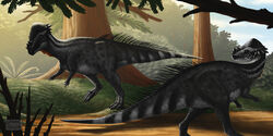 Ancient animals 449022