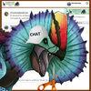 Erliphosaurus (Chat)