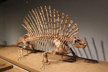 Эдафозавр-0
