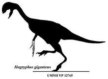 275px-Hagryphus