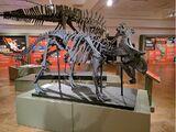 Yehuecauhceratops