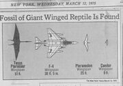 Newspaper, 1975