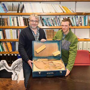 News Halszkaraptor escuilliei Pascal Godefroit Koen Stein 01 EN