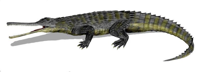 Картинки по запросу фитозавры