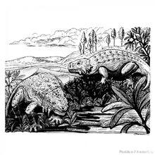Скутозавр Карпинского 2
