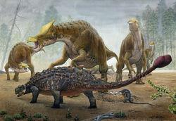 Tarchia Vs Saurolophus