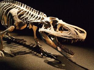 800px-Saurosuchus