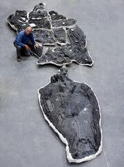 Dr. Don Brinkman poses with ichthyosaur Shonisaurus sikanniensis