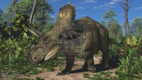 Mercuriceratops by paleoguy-d7non3h