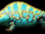 Склероторакс