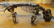 Листрозавр22