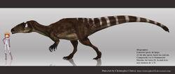 Megaraptor-razmer-m