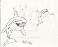 Orca citoniensis by hodarinundu-d14few1