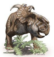 Пахиринозавр Julius Csotonyi