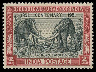 India 1951