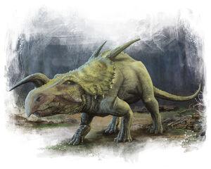 PAC 6 - Einiosaurus