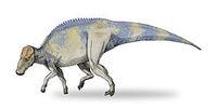 265px-Brachylophosaurus-v4