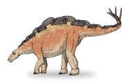 Wuerhosaurus-3