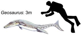 Geosaurus giganteus