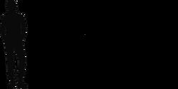 1angustinaripterus size