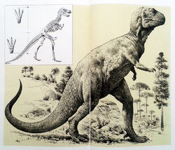 Enciclopedia de ciencias naturales Aguilar 1970s