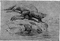 Теризинозавр - черепаха