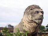 «Шри-ланкийский лев»